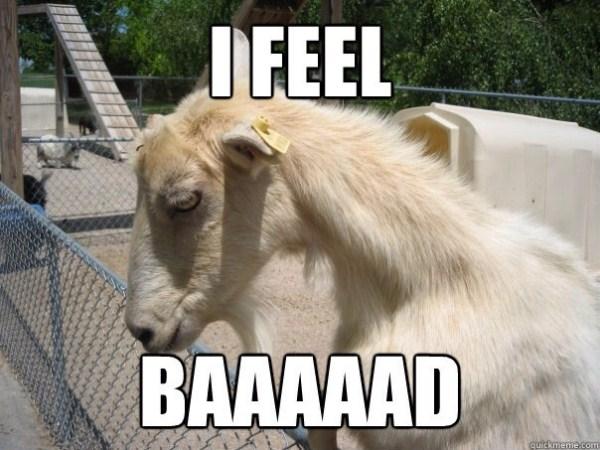 photos of goat