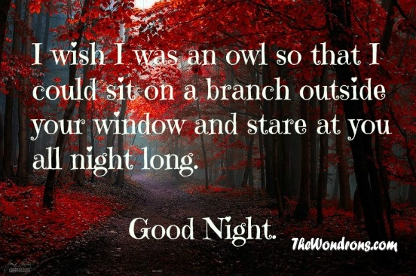 Good night quotes goodnight quotes quotes about good night