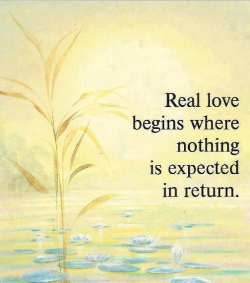 early love quotes