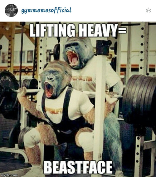 funny gym photo