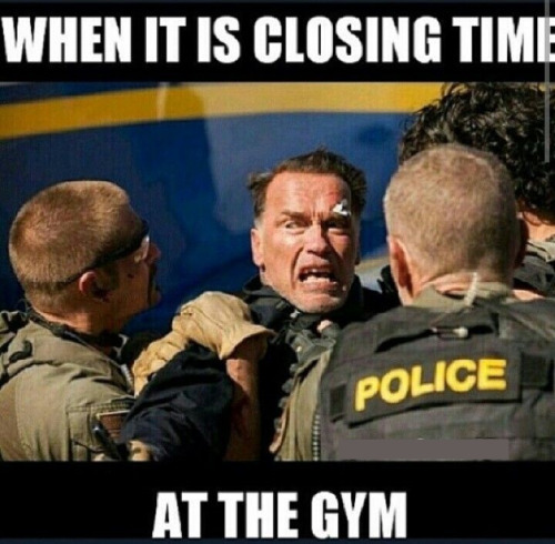 Funny Workout Meme Pics : The all time best funny gym pictures