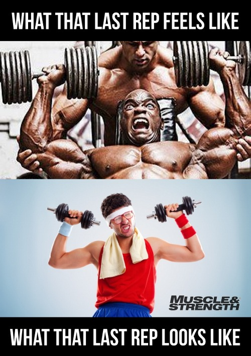 gym funny pictures