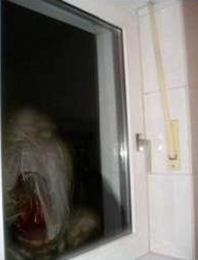 pics for halloween