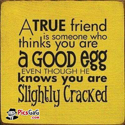 silly friends quotes