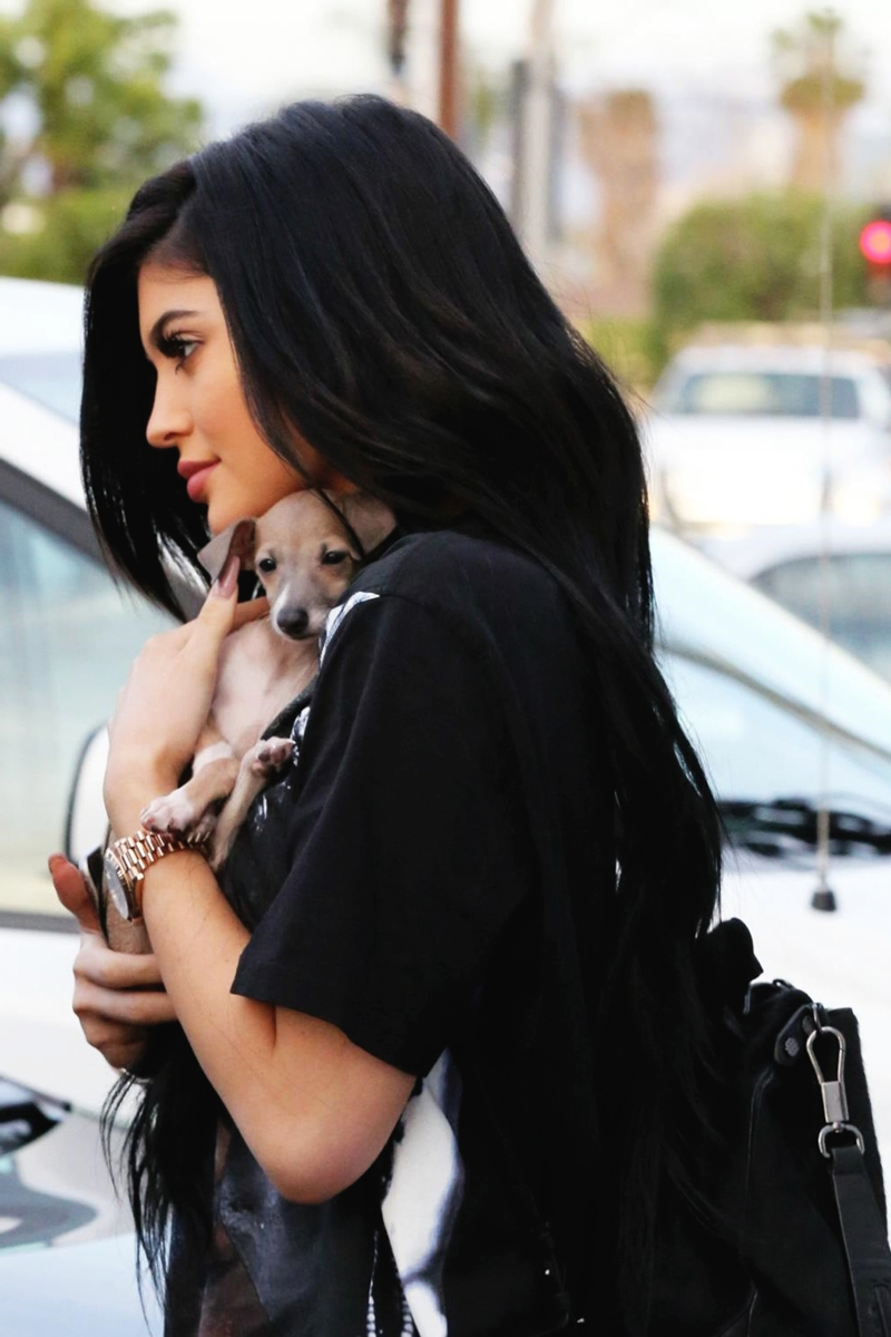 Kylie Jenner with her pet puppy