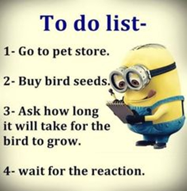 The 40 All Time Best Funny Quotes About Life Funny Image Quotes New Fun Quotes About Life