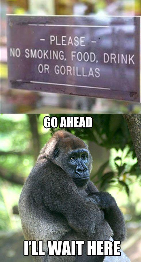 hilarious short jokes