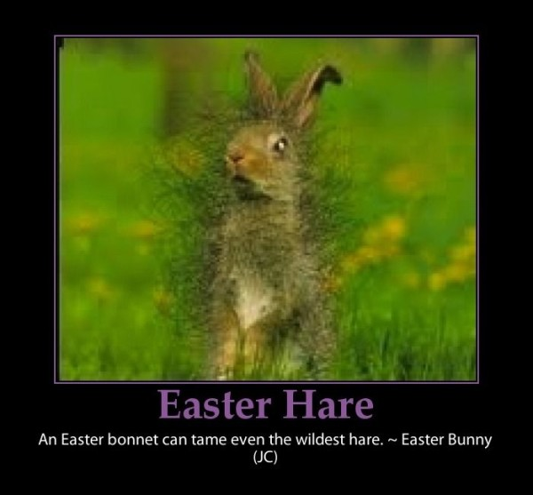 easter bunny sayings