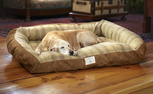 Large dog beds the 19 best dog beds for large dogs for Big dog furniture