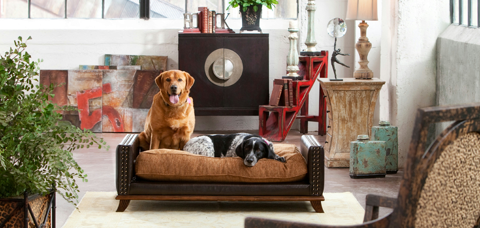 100 dog sofas for large dogs large dog beds for large dogs