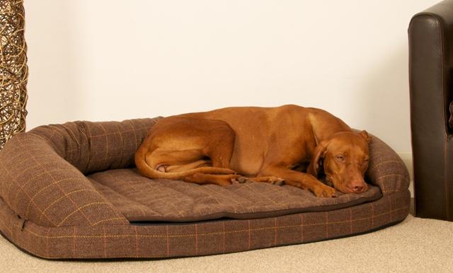 Best Memory Foam Dog Beds Uk