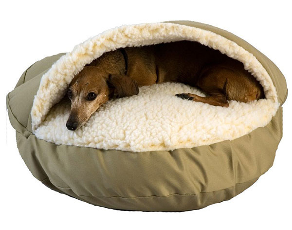 large dog beds for winters