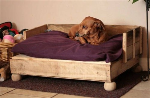 wooden bed for large dogs