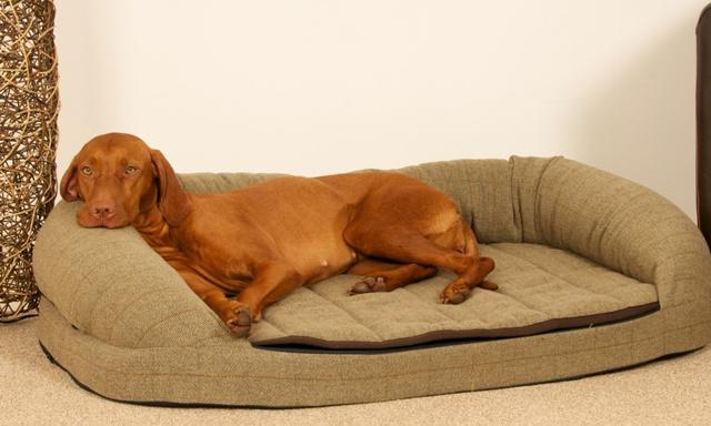x large dog beds