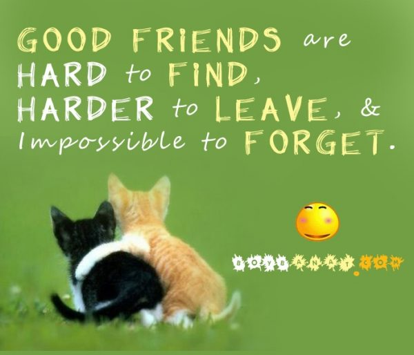 friends-forever-images-with-quotes