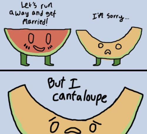short pun jokes