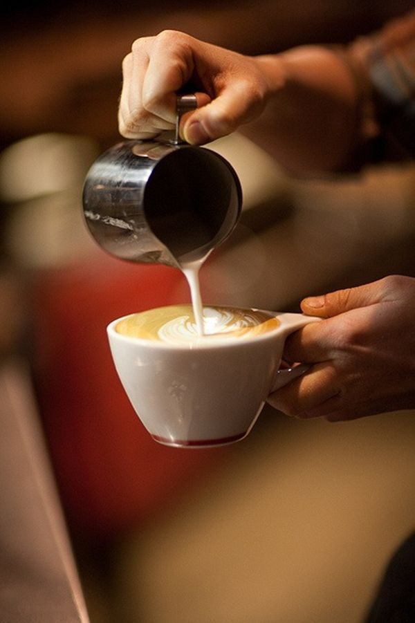 havana-coffee-city