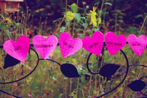 photos-of-heart