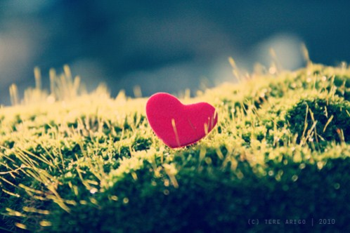 picture-of-a-heart