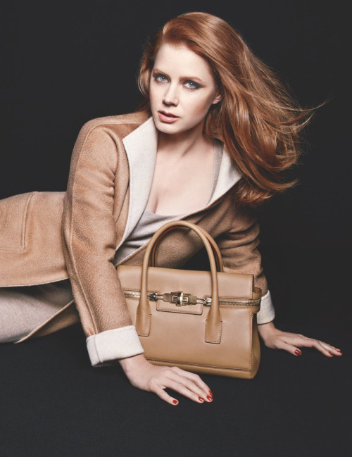 Amy Adams handbag